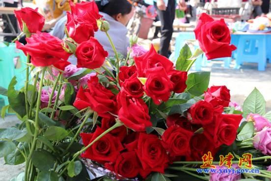 牛寨玫瑰文化旅游节开幕
