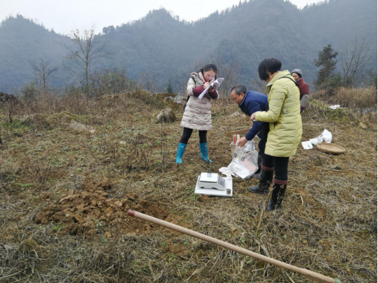 盐津县农业农村局认真开展耕地质量野外调查及取土工作